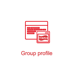 Overview of the Group